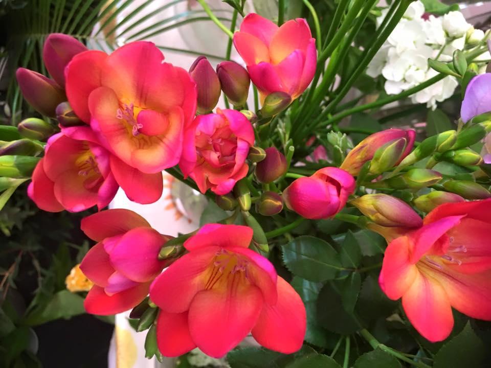 flowerbowl2